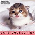 キャッツコレクション カレンダー 2015