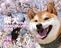 柴犬げんきなおはなしカレンダー 2015