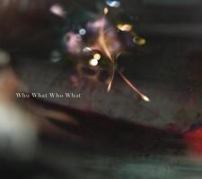 凛として時雨『Who What Who What』