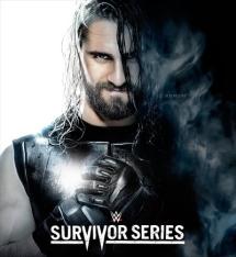 WWE サバイバーシリーズ 2014