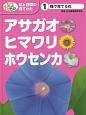 アサガオ・ヒマワリ・ホウセンカ 種で育てる花 めざせ!栽培名人花と野菜の育てかた1