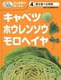 キャベツ・ホウレンソウ・モロヘイヤ 葉を食べる野菜 めざせ!栽培名人花と野菜の育てかた4