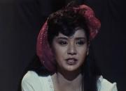 昭和の名作ライブラリー 第22集 土曜ワイド劇場 整形復顔サスペンス HDリマスター DVD-BOX