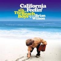 カリフォルニア・フィーリン~ベスト・オブ・ビーチ・ボーイズ・ベスト~
