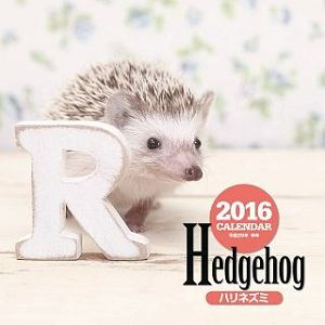 ハリネズミカレンダー 2016