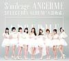 SELECTION ALBUM 「大器晩成」(通常盤)