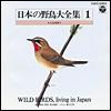 日本の野鳥大全集-1