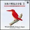 日本の野鳥大全集-3