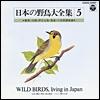日本の野鳥大全集-5