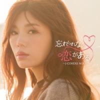 忘れられない恋がある~J-COVERS MIX~ Mixed by DJ BABY-T