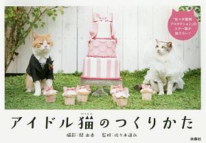 アイドル猫-にゃんこ-のつくりかた