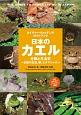日本のカエル ネイチャーウォッチングガイドブック 分類と生活史~全種の生態、卵、オタマジャクシ