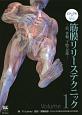 ビジュアルで学ぶ筋膜リリーステクニック 肩、骨盤、下肢・足部(1)