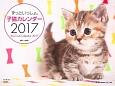 ずっといっしょ。子猫カレンダー 2017