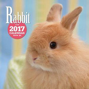 2017年大判カレンダー ウサギ