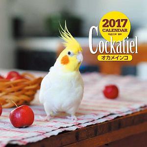 2017年大判カレンダー オカメインコ
