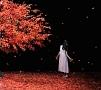 茜さす/everlasting snow(A)(DVD付)