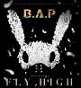 FLY HIGH(通常盤A)(DVD付)