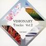 VISIONARY Tracks Vol.2
