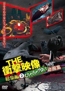 THE 衝撃映像 総集編(2) むちゃくちゃグロい!動画集