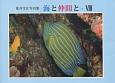 海と仲間と 荒井雪江写真集 (8)