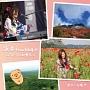 浪漫travelogue ~うたうたの唄 5~