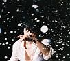 聖域(25周年ライブ)(DVD付)