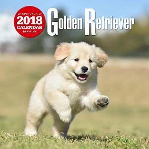 大判カレンダー ゴールデン・レトリーバー 2018