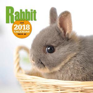 大判カレンダー ウサギ 2018