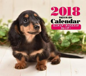 ミニカレンダー ミニチュア・ダックスフンド 2018