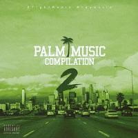 PALM MUSIC COMPILATION 2
