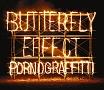 BUTTERFLY EFFECT(DVD付)