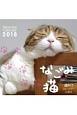週めくりカレンダー なごみ猫 2018