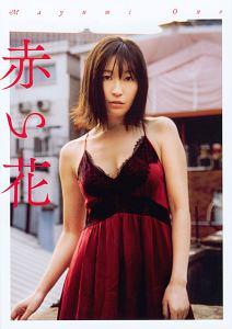 「赤い花」 小野真弓写真集