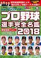 ショウアップナイター プロ野球選手完全名鑑 2018