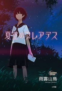 『夏空のプレアデス』東京大学謎解き制作集団AnotherVision
