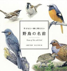 『子どもと一緒に覚えたい 野鳥の名前』上野健一