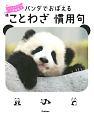 パンダでおぼえる ことわざ慣用句 大人も子どもも 一生役立つ