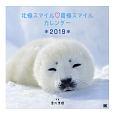 北極スマイル・南極スマイル カレンダー 2019