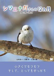 『シマエナガさんの12ヵ月 カレンダー 2019』有田哲平