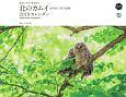 東京カメラ部×エイ出版社 北のカムイ 命煌めく、野生動物 カレンダー 2019