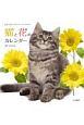 猫と花のカレンダー