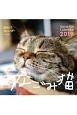 週めくりカレンダー なごみ猫 2019