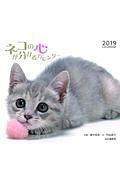 ネコの心が分かるカレンダー 2019