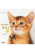 ほのぼの子ねこ mini カレンダー 2019