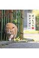 ぽっちゃり猫カレンダー 2019