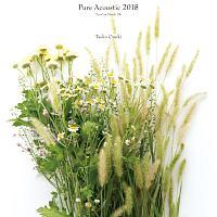 Pure Acoustic 2018