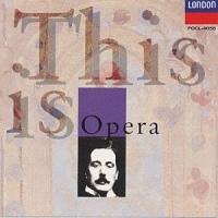 これがオペラだ