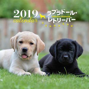 大判カレンダー ラブラドール・レトリーバー 2019