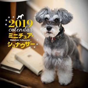 大判カレンダー ミニチュア・シュナウザー 2019